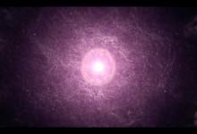 L'Oreal – Nutrigloss Luminizer